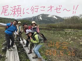 18/5/26 尾瀬公式山行山歩会