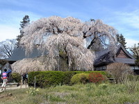 09/04/09 ツーリングスター 塩山