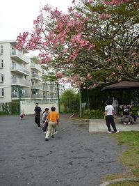 09/04/18 13公園の日