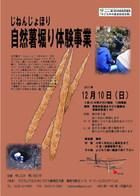 17/12/10 自然薯堀